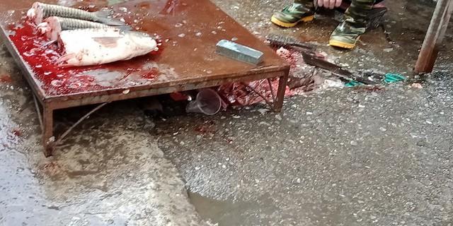 Cảnh mổ cá sống mất mỹ quan, ruột, vây cá, nước bẩn lênh láng ra đường. Ảnh tại chợ cóc ngõ 189 Giảng Võ.