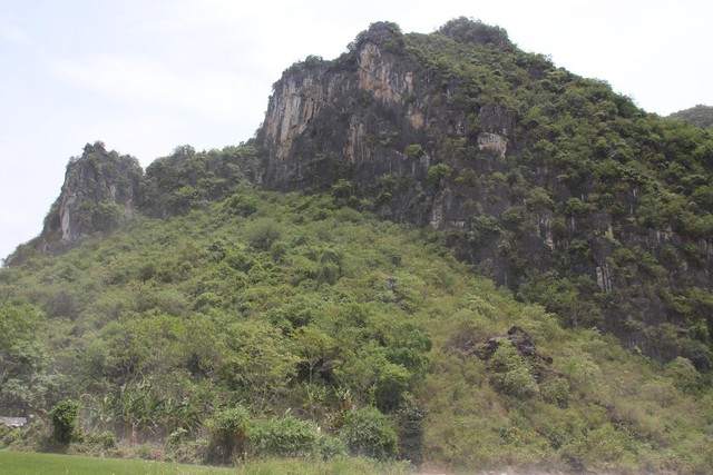 Hang Cò nằm ngay dưới núi đá phủ xanh bởi cây dại tự nhiên.