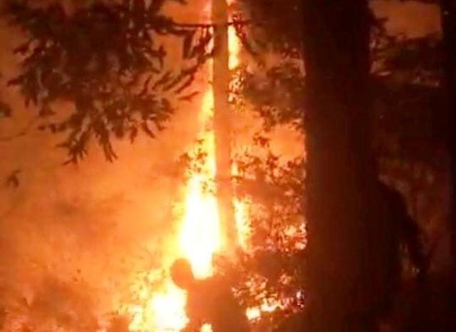 Đám cháy xảy ra trên núi Dũng Quyết.