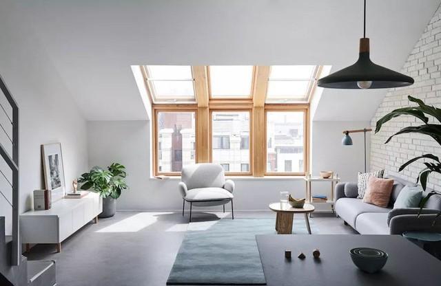 Điểm nhấn tuyệt vời từ thảm trải sàn màu xanh tạo sự kết nối với cây xanh, điểm nhấn tự nhiên và ấn tượng trong căn hộ.