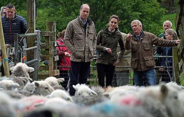 William và Kate thăm trang trại ở vùng nông thôn Cumbria, Anh, hôm 11/6. Ảnh: PA.