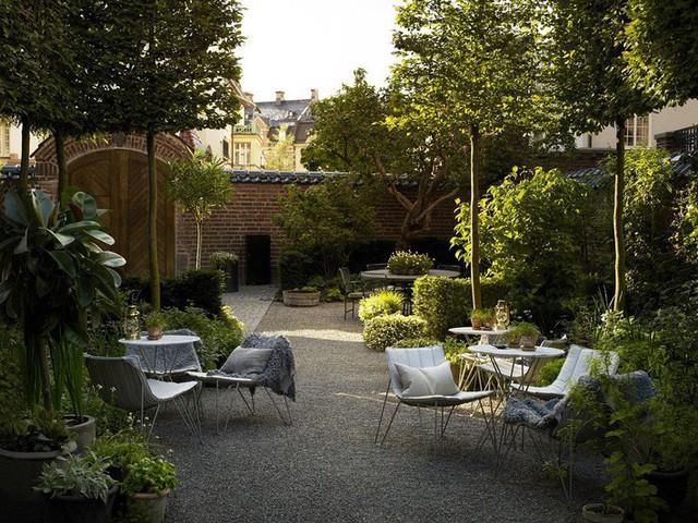 Khu vườn yên tĩnh mà đắt giá của chủ nhân ngôi nhà lúc nào cũng khiến tất cả bạn bè phải ghen tị.