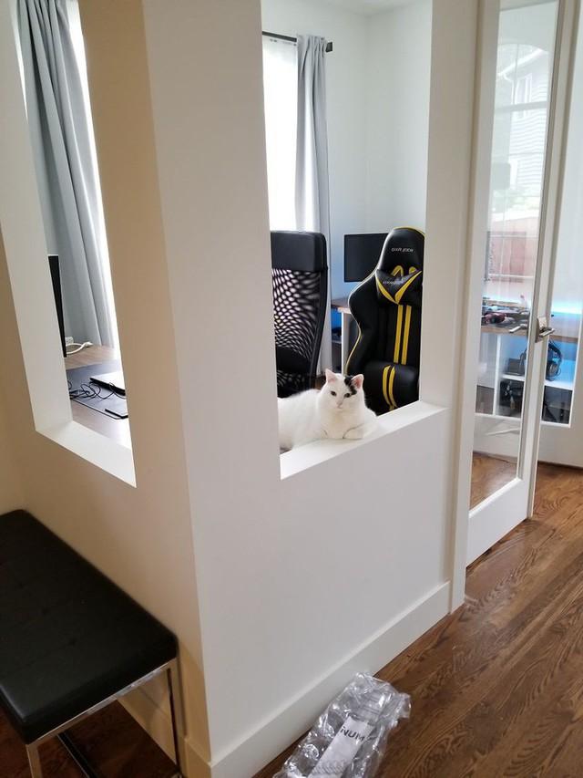 Anh bắt đầu hoàn thiện dần đồ nội thất bên trong không gian. Tuy nhiên, một vấn đề mới phát sinh là chưa có cửa để tạo không gian kín khi làm việc.