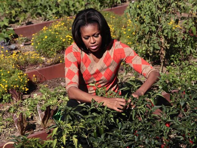 Nói vậy nhưng không phải cuộc sống của gia đình Obama xa hoa như các kỳ nghỉ của họ. Bà Michelle thích ăn trưa theo suất, chẳng hạn như gà tây rắc ớt khi đi ra ngoài. Bà cũng thường xuyên tới tập luyện tại trung tâm thể dục, thể thao SoulCycle, nơi tính phí 36 USD/buổi hoặc 900 USD/30 buổi.