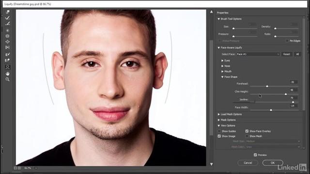 Bộ loc chỉnh sửa thần kỳ từ Adobe, Face Aware Liquify. Ảnh: Sejari Dari.
