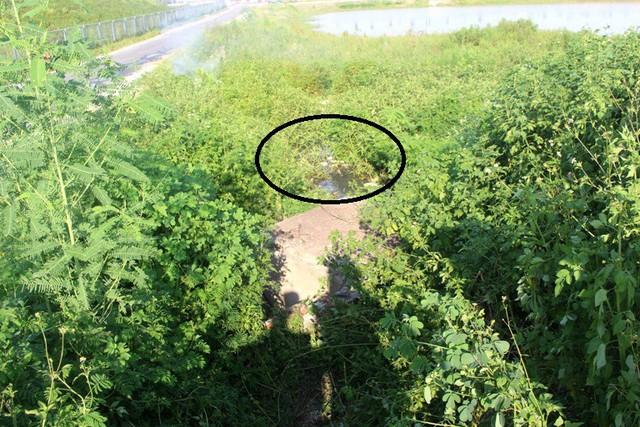 Khu vực rãnh nước, cạnh đường gom cao tốc QL5 Hà Nội - Hải Phòng, nơi phát hiện thi thể anh Đ. nằm tử vong. Ảnh: Đ.Tùy
