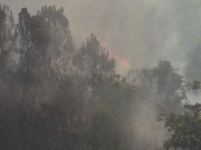 Nắng nóng gay gắt, Hà Tĩnh liên tiếp xảy ra cháy rừng - Ảnh 1.