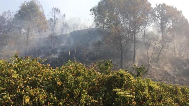 Nắng nóng gay gắt, Hà Tĩnh liên tiếp xảy ra cháy rừng - Ảnh 2.