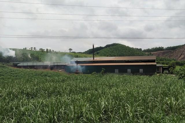 Cơ sở sản xuất than không phép vẫn hoạt động (ảnh chụp ngày 24/6). Ảnh: N.Hưng