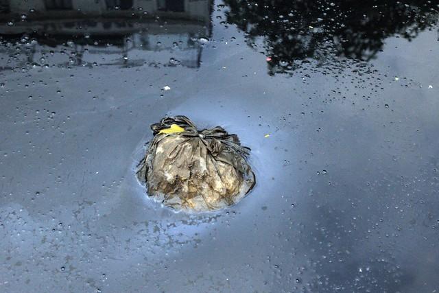 Hình ảnh ô nhiễm được PV ghi lại ngay cạnh các máy xử lý nước thải công nghệ Nano Nhật Bản.
