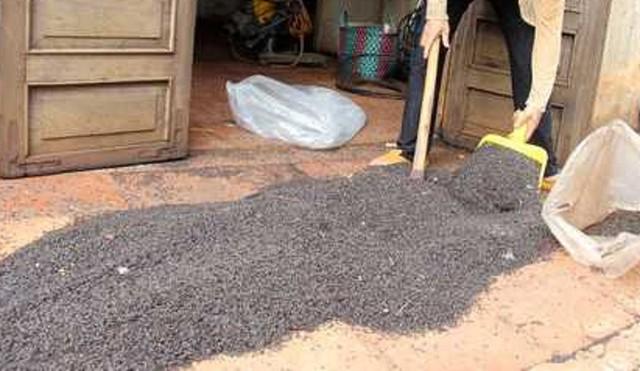 Dân quét dọn bọ đậu đen.