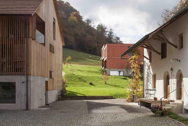 Không gian sân vườn xung quanh được lát gạch có cùng tông màu với tường.