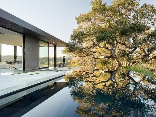 Một phần của phòng khách được đặt sát hồ bơi với đường thiết kế góc cạnh mạnh mẽ.