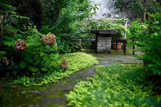Lối vào nhà rêu phong cũ kỹ.