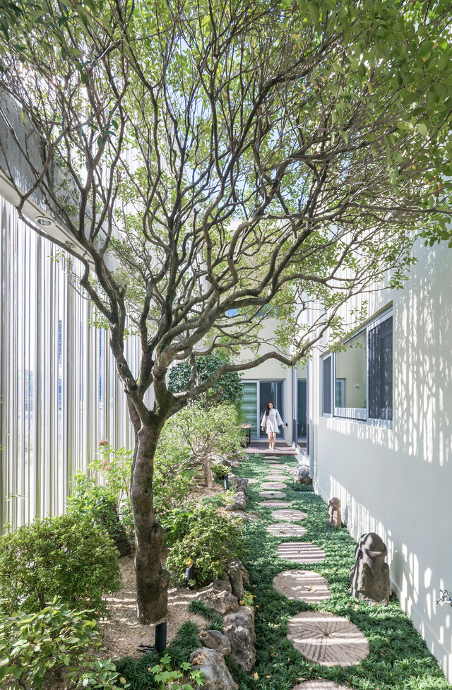 Khu vườn, bức tường thép, ánh sáng tạo thành bức tranh sống động cho ngôi nhà.