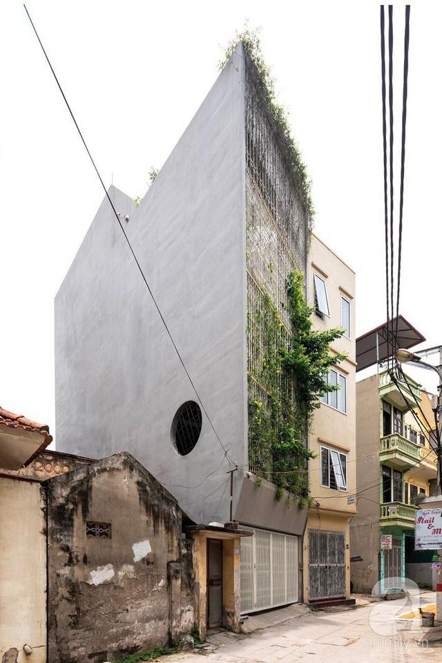 Ngôi nhà cửa xếp ở Hà Nội ai đi qua cũng phải dừng lại ngắm nhìn - Ảnh 1.