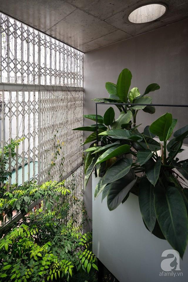 Ngôi nhà cửa xếp ở Hà Nội ai đi qua cũng phải dừng lại ngắm nhìn - Ảnh 12.