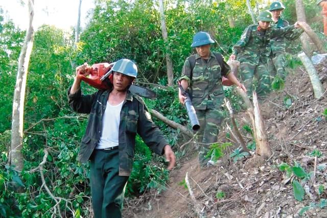 Vụ cháy lớn ở Hà Tĩnh: Những người dân xả thân cứu rừng - Ảnh 1.