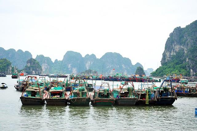 Bão số 3 cách Quảng Ninh, Hải Phòng 360 km - Ảnh 3.
