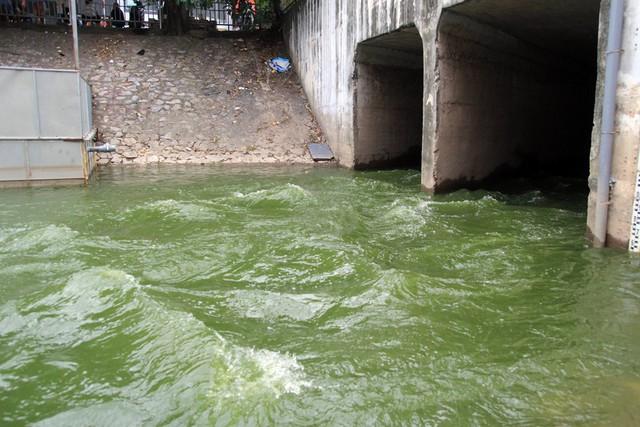 Hơn 800.000m3 nước từ hồ Tây đang ồ ạt xả vào sông Tô Lịch - Ảnh 1.