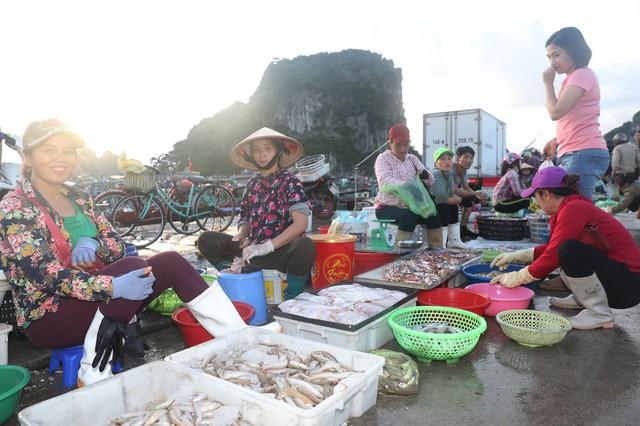 Đến Quảng Ninh - lạc bước ở Vân Đồn - Ảnh 4.