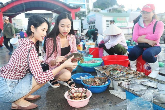 Đến Quảng Ninh - lạc bước ở Vân Đồn - Ảnh 6.