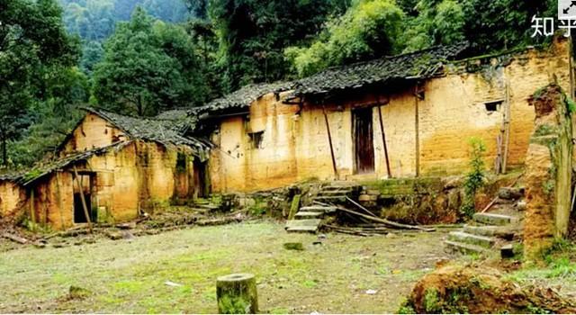 Cô gái xây nhà trên núi đưa cha mẹ lên sống ẩn dật  - Ảnh 3.