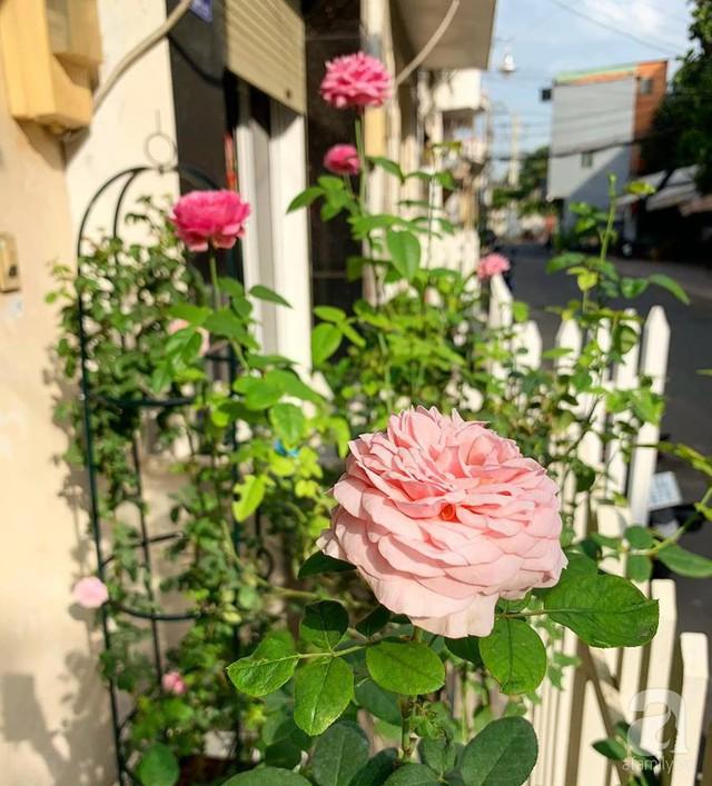 Ngôi nhà phố luôn ngát hương bởi 50 gốc hổng rực rỡ trên ban công ở Quận 1, Sài Gòn - Ảnh 32.