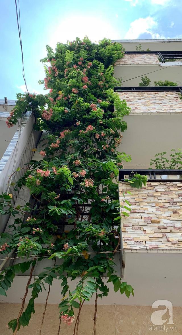 Ngôi nhà phố luôn ngát hương bởi 50 gốc hổng rực rỡ trên ban công ở Quận 1, Sài Gòn - Ảnh 8.