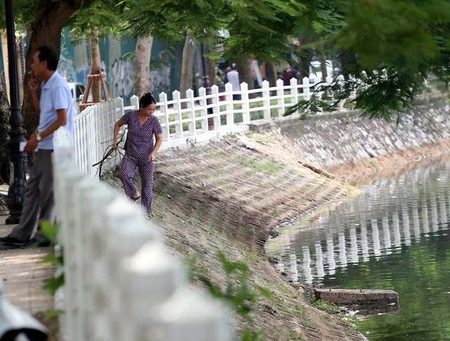 Hồ Trúc Bạch - Hà Nội bất ngờ xuất hiện tình trạng cá chết hàng loạt - Ảnh 10.