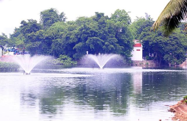 Hồ Trúc Bạch - Hà Nội bất ngờ xuất hiện tình trạng cá chết hàng loạt - Ảnh 11.