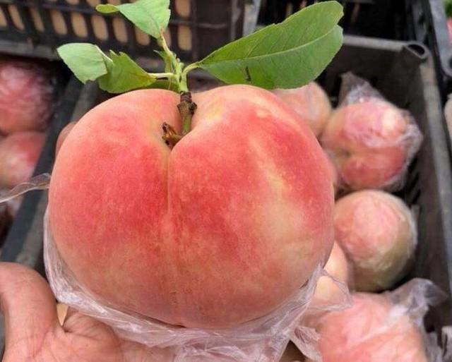 """""""Đào tiên bán tràn lan từ chợ dân sinh đến cửa hàng hoa quả nhập khẩu với giá cả chênh lệch đến trăm nghìn/kg - Ảnh 1."""