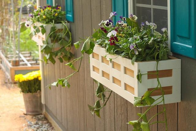 Không gian sống đẹp chất ngất nhờ những chiếc hộp trồng cây tự làm gắn cửa sổ - Ảnh 1.