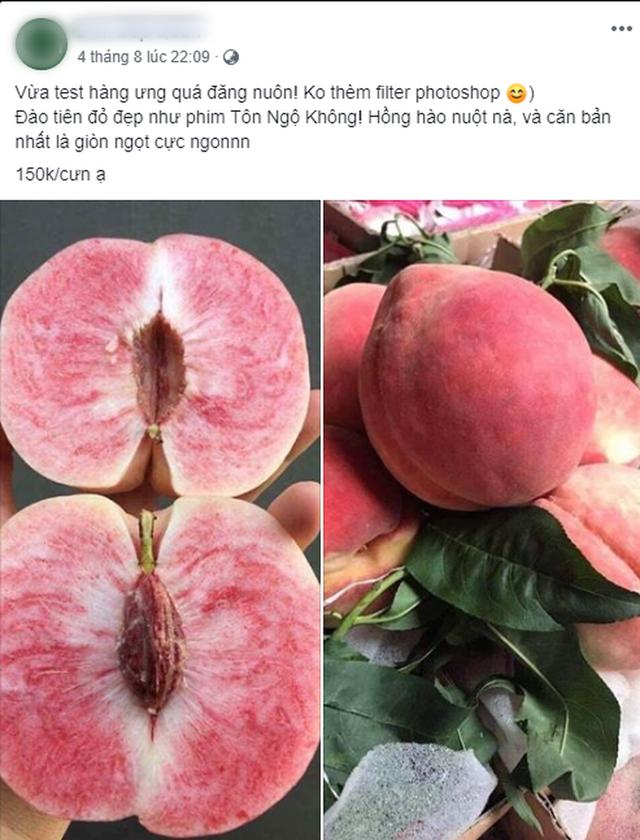 """""""Đào tiên bán tràn lan từ chợ dân sinh đến cửa hàng hoa quả nhập khẩu với giá cả chênh lệch đến trăm nghìn/kg - Ảnh 3."""