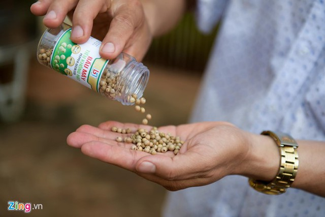 Hơn 15 triệu đồng/kg tiêu ăn như kẹo đầu tiên tại Việt Nam - Ảnh 1.