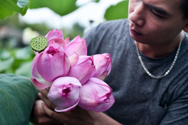 """Chàng trai 8x bỏ công việc ngàn đô và hành trình đi tìm hoa sen """"bất tử"""" - Ảnh 5."""