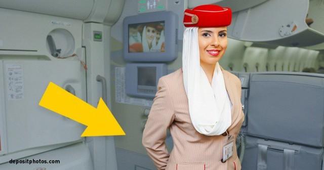 Vì sao tiếp viên hàng không thường khoanh tay sau lưng khi chào khách? - Ảnh 1.