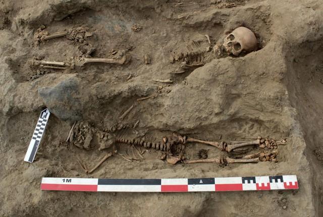 Phát hiện ngôi mộ tập thể chứa hài cốt 227 đứa trẻ, tiết lộ sự thật rùng rợn về nghi lễ hiến tế mê tín ngàn năm trước - Ảnh 5.