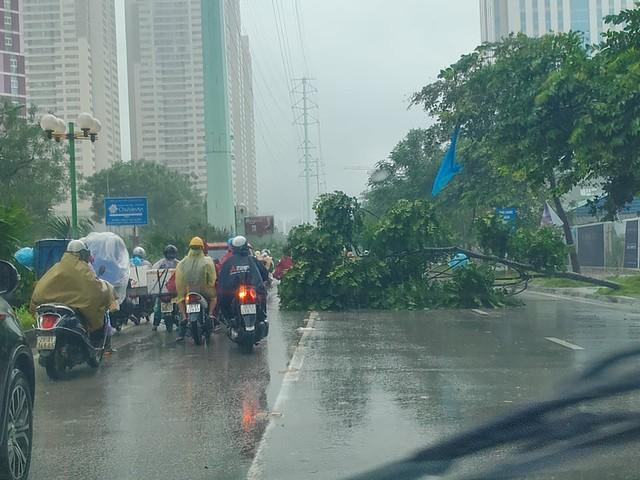 Gió giật mạnh, nhiều điểm ngập sâu, cây đổ tràn lan ở Hà Nội do ảnh hưởng mưa bão - Ảnh 10.