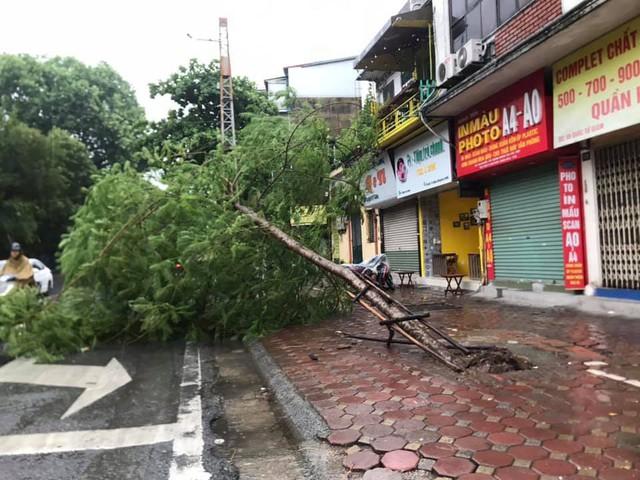 Gió giật mạnh, nhiều điểm ngập sâu, cây đổ tràn lan ở Hà Nội do ảnh hưởng mưa bão - Ảnh 13.