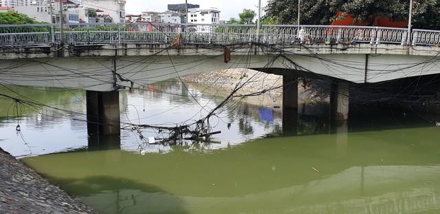 Sau bão số 3, sông Tô Lịch trong xanh nhưng nhiều rác trên bề mặt - Ảnh 5.