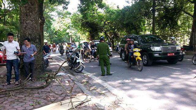 Kinh hoàng cây đổ gây chết người ở Hà Nội nhưng đây lại không phải là lần đầu tiên - Ảnh 5.