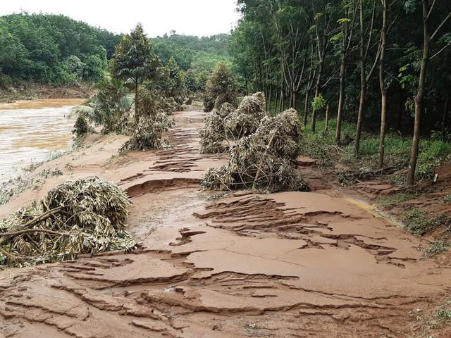 Bình Phước: Mưa lớn nhiều ngày phá hủy hoàn toàn cầu dây, nhiều ngôi nhà bị chìm sâu trong biển nước. - Ảnh 2.