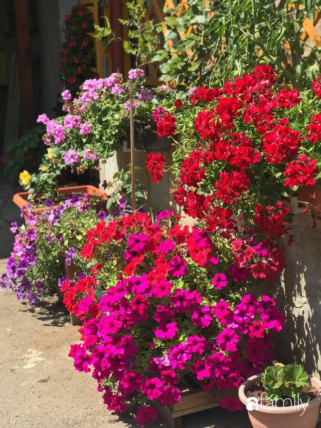Mẹ đảm ở Czech cải tạo sân bê tông thành khu vườn với bạt ngàn rau củ quả Việt tươi tốt - Ảnh 30.