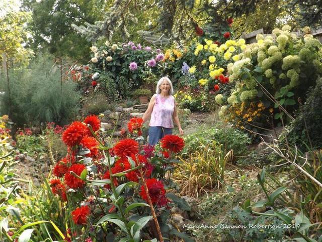 Khu vườn trồng đủ loại rau củ quả khổng lồ của ông bà lão yêu thích làm vườn sau khi nghỉ hưu - Ảnh 2.