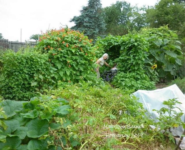 Khu vườn trồng đủ loại rau củ quả khổng lồ của ông bà lão yêu thích làm vườn sau khi nghỉ hưu - Ảnh 3.