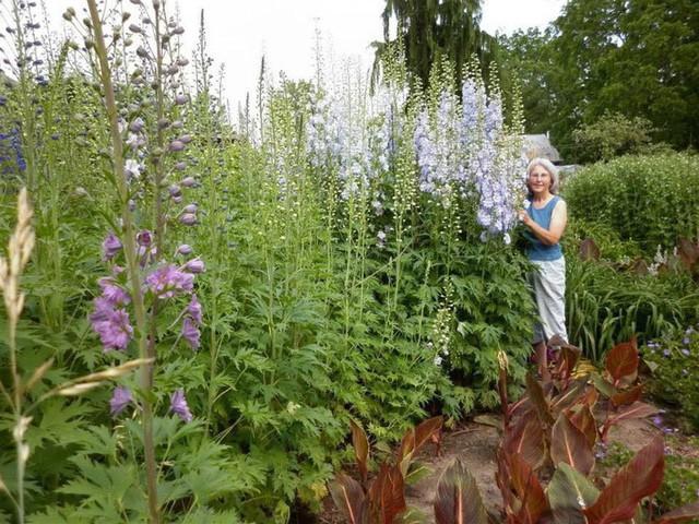 Khu vườn trồng đủ loại rau củ quả khổng lồ của ông bà lão yêu thích làm vườn sau khi nghỉ hưu - Ảnh 8.