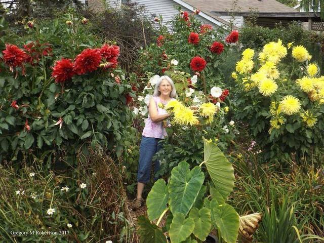 Khu vườn trồng đủ loại rau củ quả khổng lồ của ông bà lão yêu thích làm vườn sau khi nghỉ hưu - Ảnh 10.