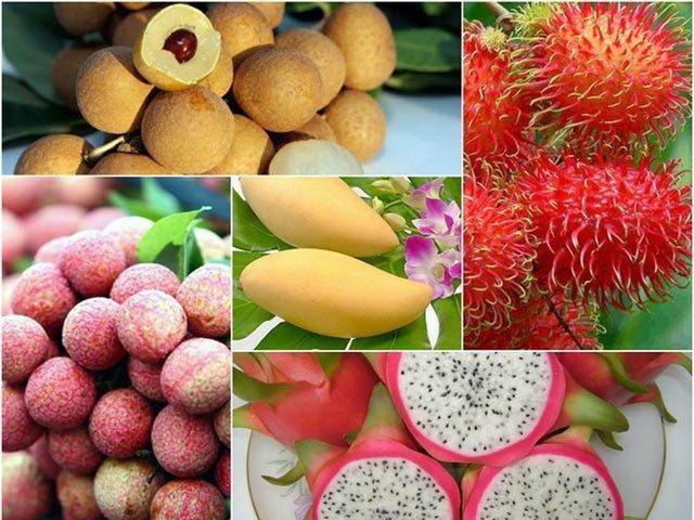 6 loại trái cây tươi ở Việt Nam đã được xuất khẩu thành công với giá bán khó tin - Ảnh 1.