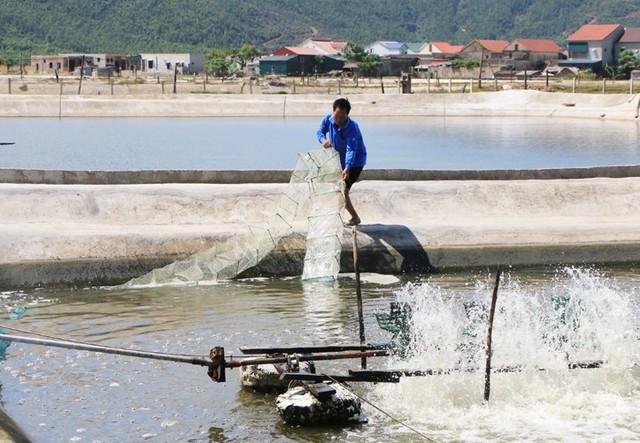 Hà Tĩnh: Đào tạo nghề, giải quyết việc làm cho người dân sau sự cố môi trường biển - Ảnh 1.